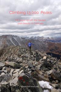 Mt Guyot - Pin me