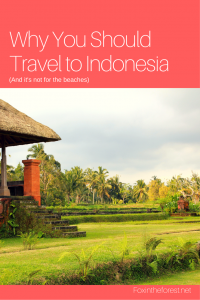 travel to indonesia - pin me