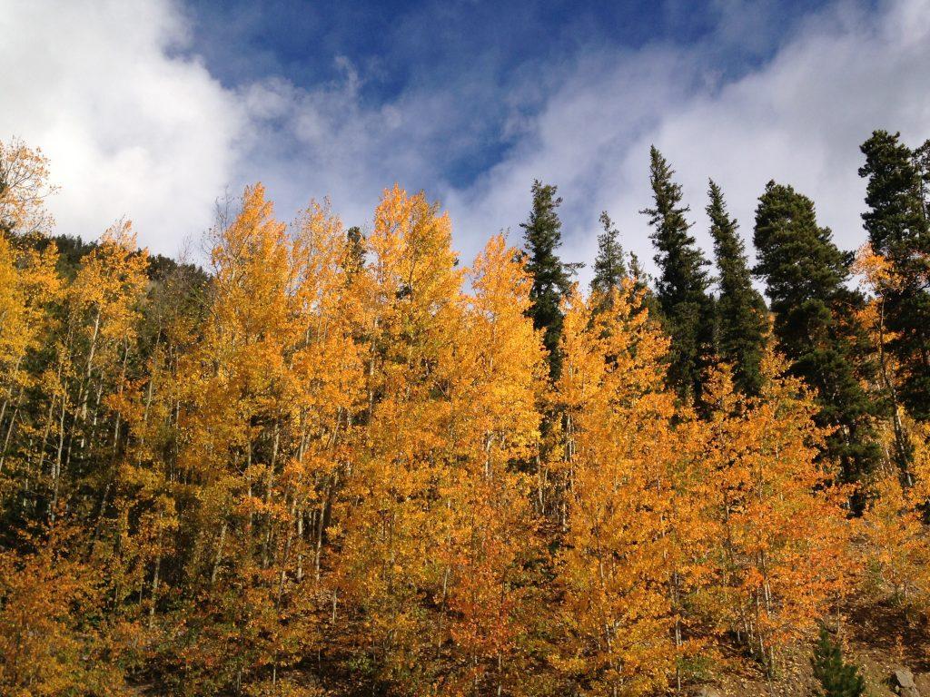 hiking trails near denver