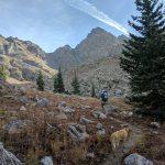 Mount Powell and Kneeknocker Pass