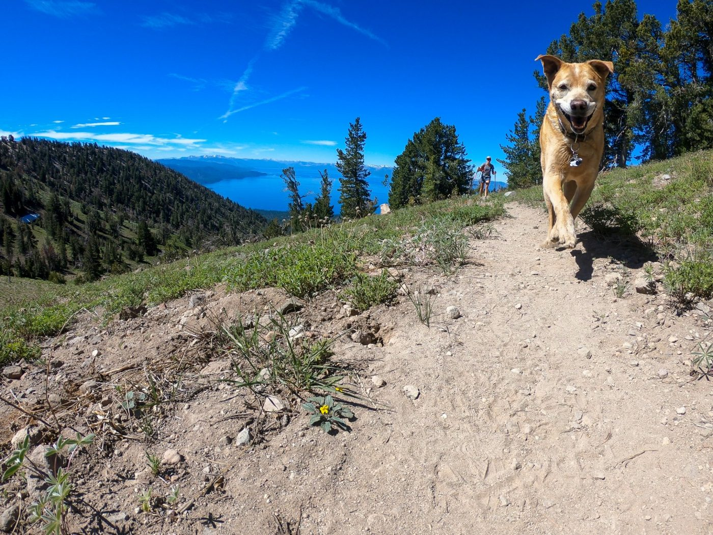 Lake tahoe and the PCT