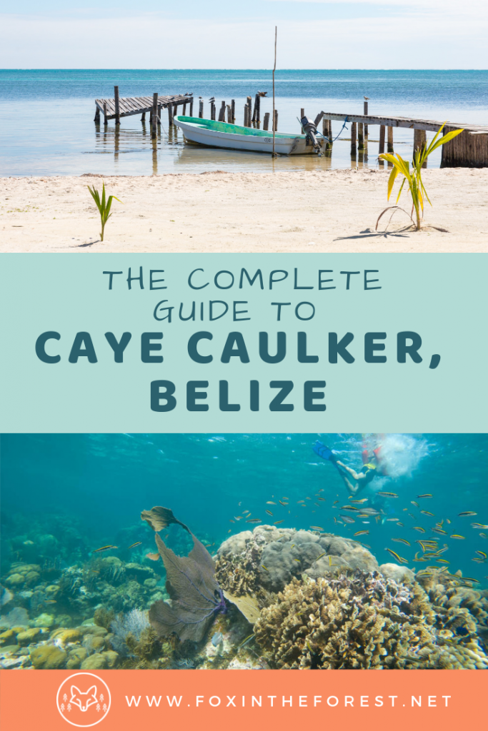 Your vacation guide to Caye Caulker, Belize. Everything you need to know about things to do in Caye Caulker including the best food, where to stay, and the best beaches. #belize #beach #travel
