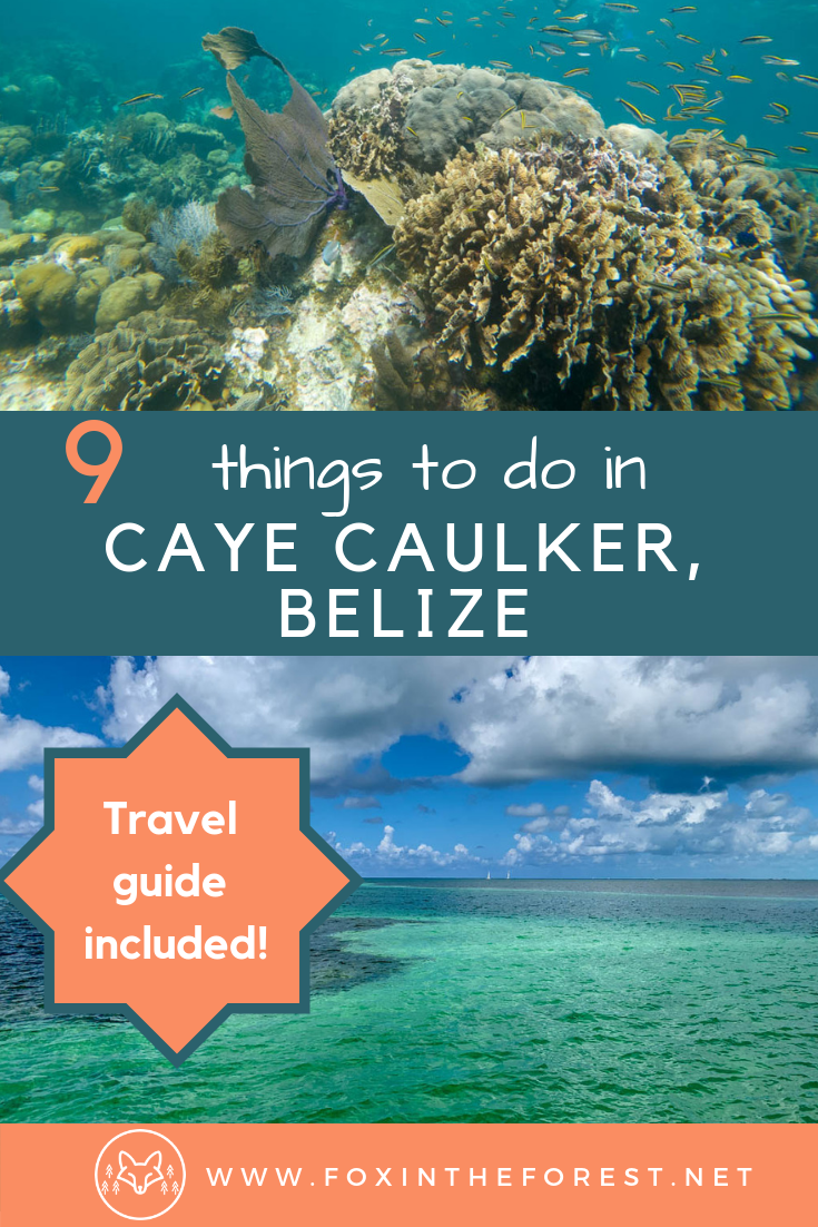 Travel guide to Caye Caulker, Belize. The best island in the Caribbean. Activities and things to do in Caye Caulker, Belize. Travel to Caye Caulker, Belize. #Belize #CentralAmerica #travel #CarribbeanTravel