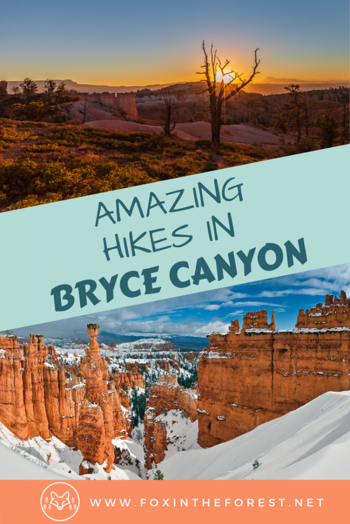 Best hikes in Bryce Canyon National Park. What to do with one day in Bryce Caynon National Park, Utah. Camping in Bryce Canyon. Best Instagram spots in Bryce Canyon National Park. One day intinerary. #nationalparks #hiking #camping #USA