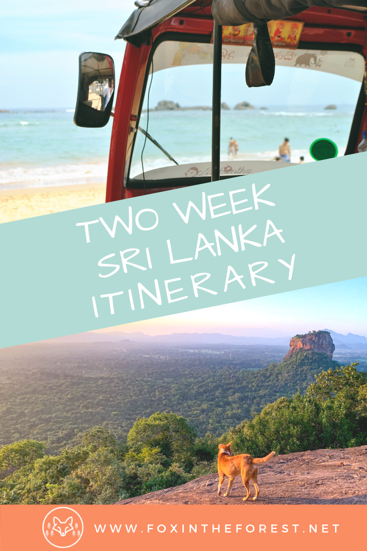 Spend the perfect two weeks in Sri Lanka with this Sri Lanka travel itinerary. Explore Ella, ride the trains in Sri Lanka, go on a wildlife safari, and relax at the beach. Best things to do in Sri Lanka. #srilanka #travel #asiatravel #asia #outdoortravel