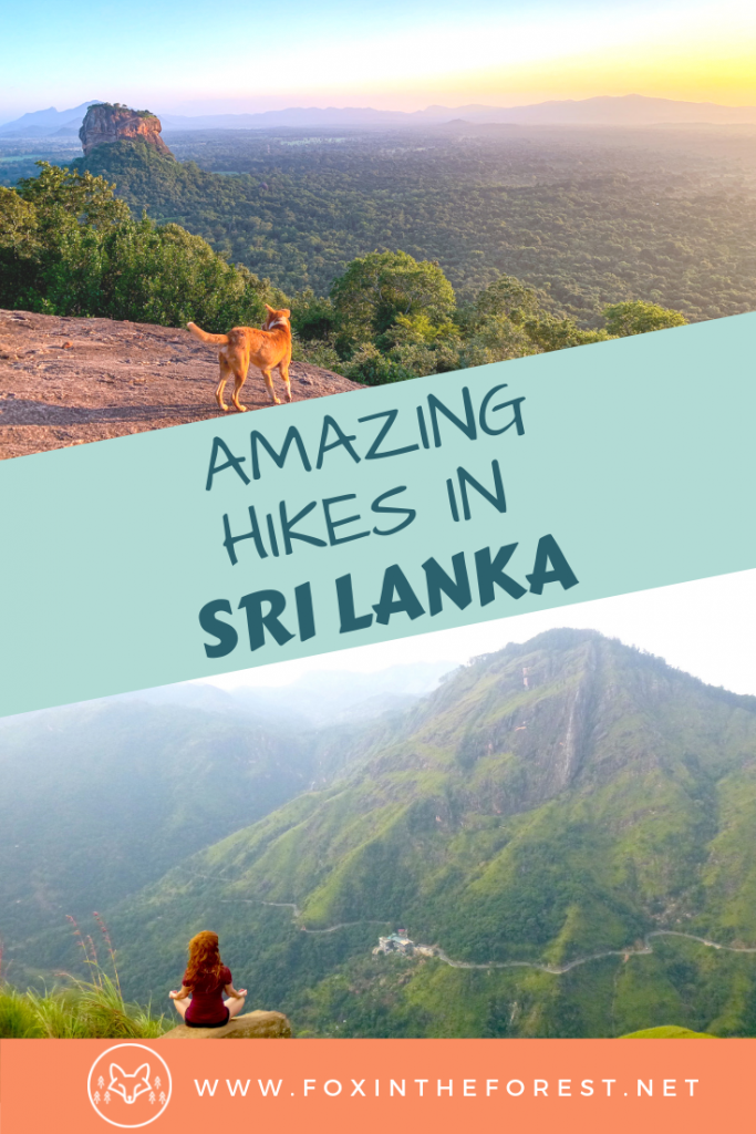 The best treks and hikes in Sri Lanka. Hike Adams Peak. Hikes near Ella. Best views in Sri Lanka. Bucket list Sri Lanka. The best things to do in Sri Lanka. #asia #adventuretravel #hiking #srilanka