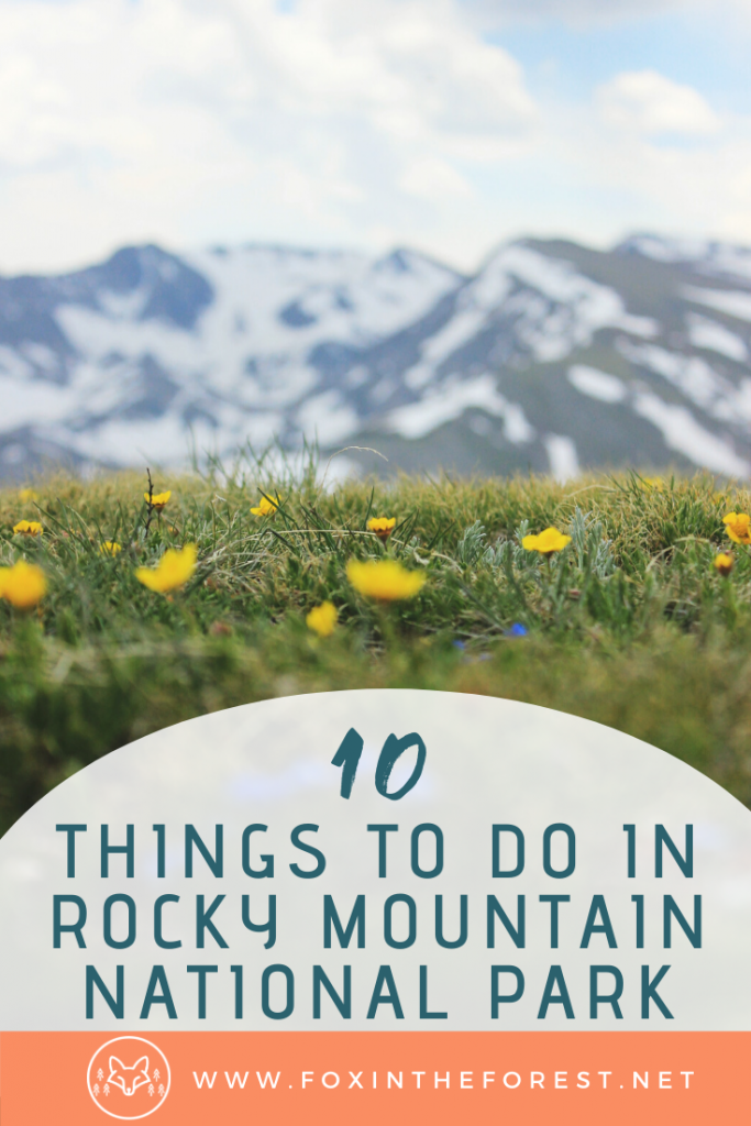 The local's guide to the best things to do in Rocky Mountain National Park. This insiders guide gives you all the details about what to do in Rocky Mountain National Park and how to do it. Includes the bet activities for summer, spring, and fall. #nationalparks #colorado #travel