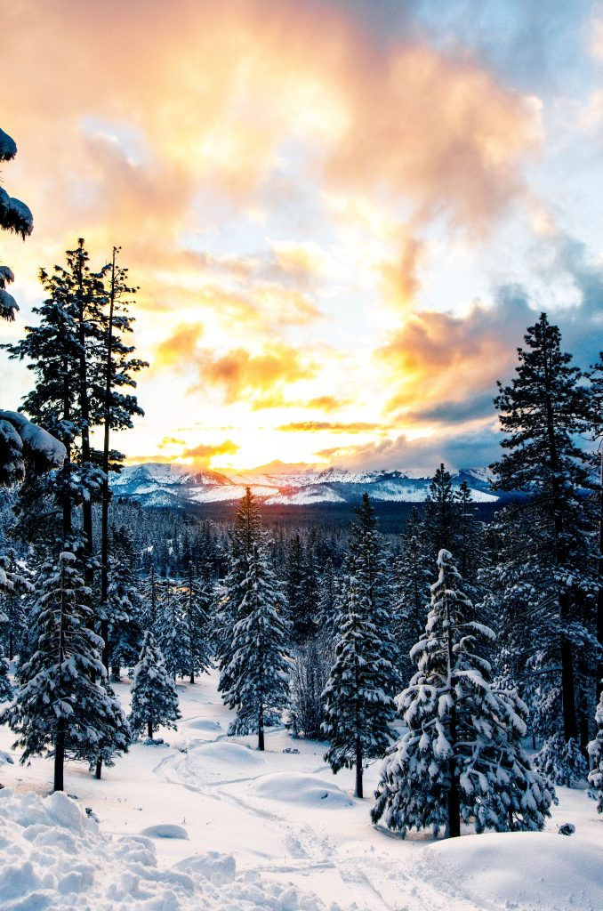 Things to do in south lake tahoe in winter