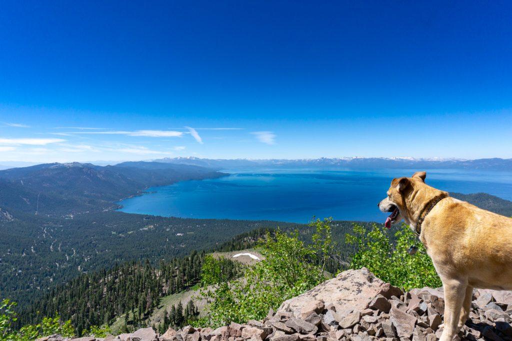 best views in Lake Tahoe