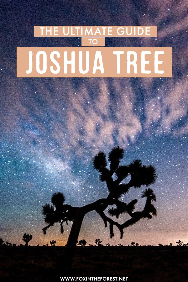 Dreaming of visiting Joshua Tree National Park? On this travel guide, I share everything you need to know to make the most out of your time in the hear of the California desert - from unique things to do, to the history of the national park, tips on where to stay and more, this is the only travel guide you need to plan your visit to Joshua Tree National Park! #California