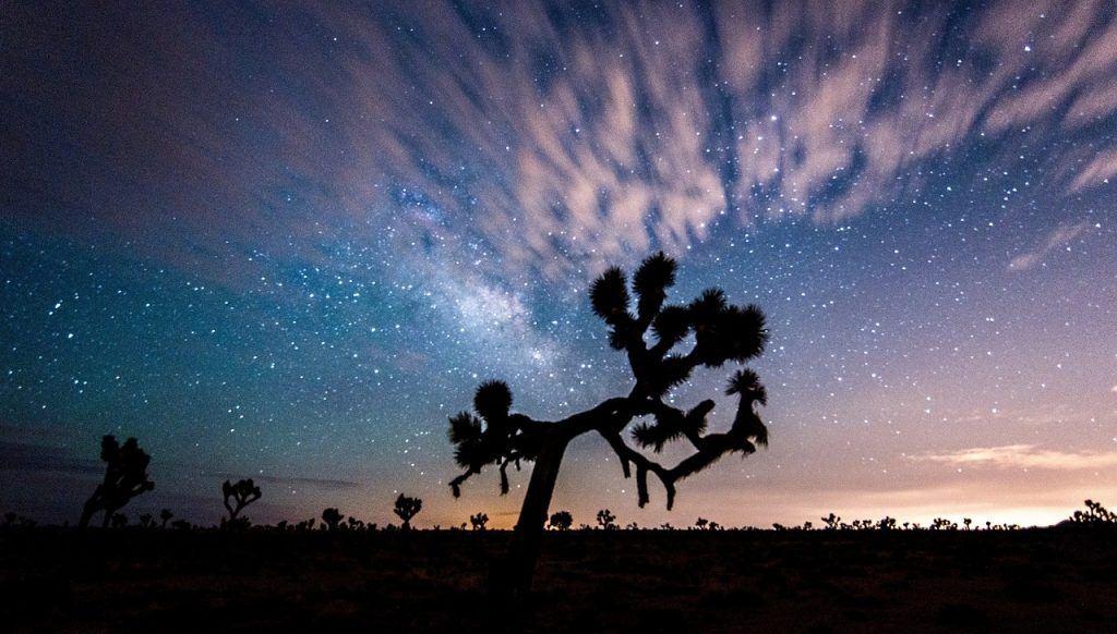 Joshua Tree National Park Tips