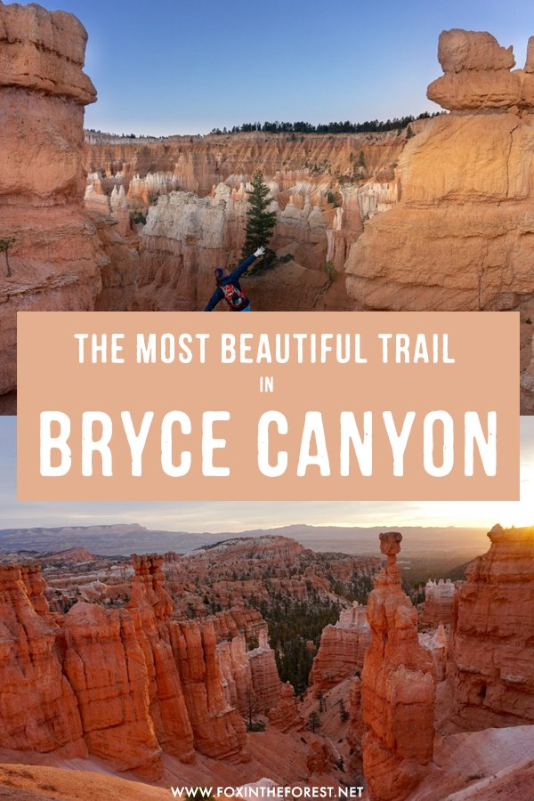 Wondering how to make the most out of your visit to Bryce Canyon National Park? If you're on the lookout for the best destination in Bryce Canyon, this trail is definitely the most scenic hiking trail in Bryce Canyon and Utah! #Utah #BryceCanyon #USA