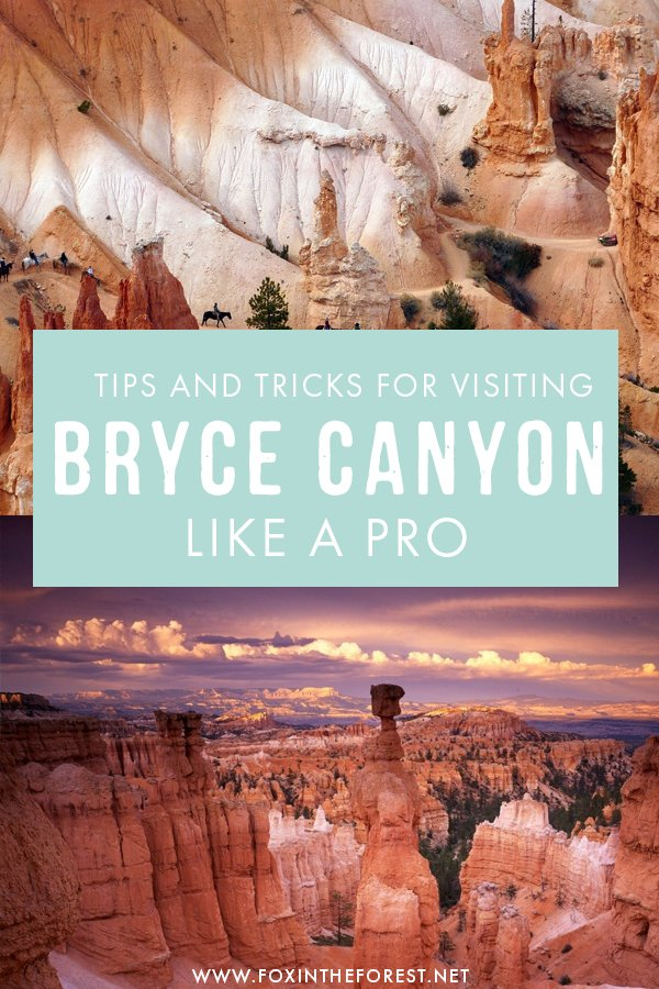 Planning to visit Bryce Canyon national park? If you'd like to skip the tourist traps and head to the good stuff instead, here's the ultimate guide to visiting Bryce Canyon like a pro, including tips, hiking trails, things to do, and more!