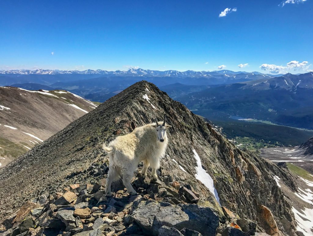 best hikes in breckenridge