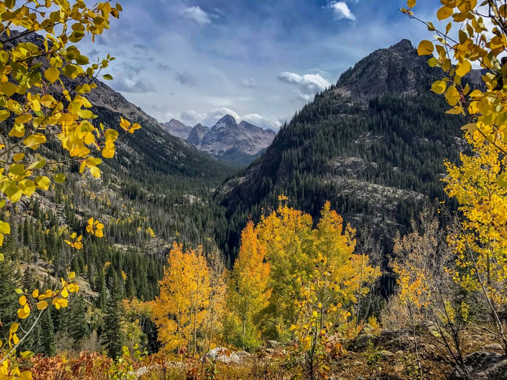 fall colors in the colorado