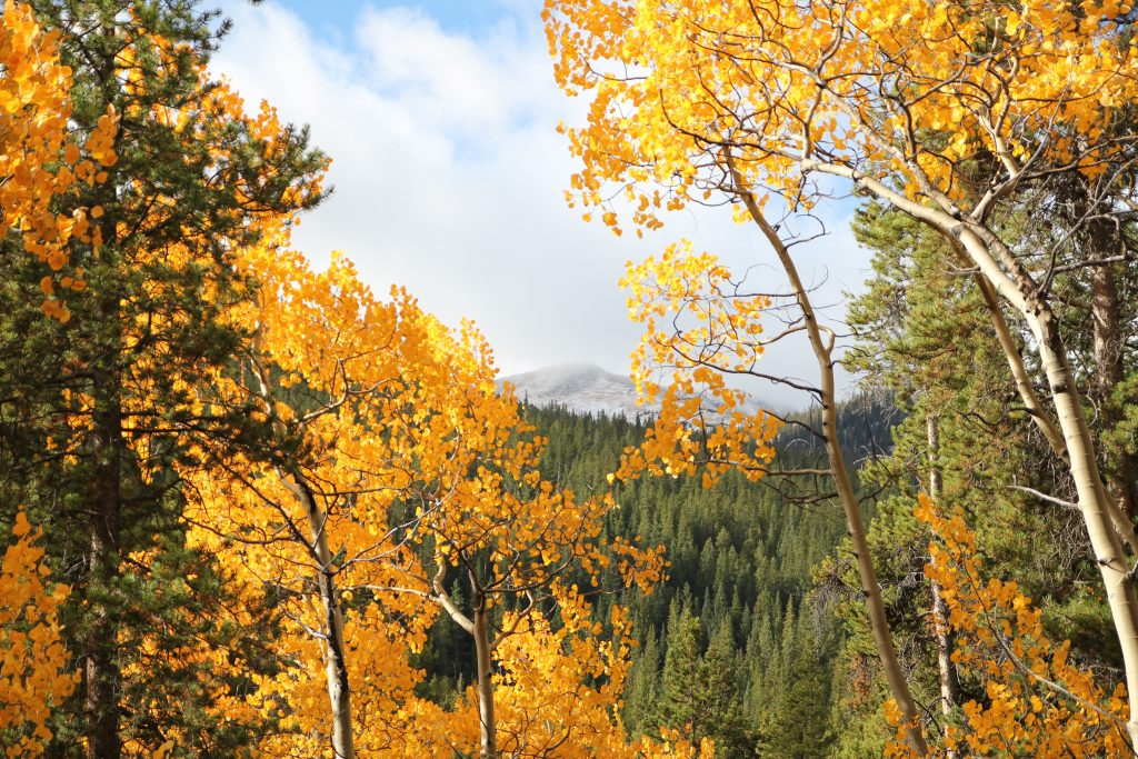 best drives in Colorado for fall