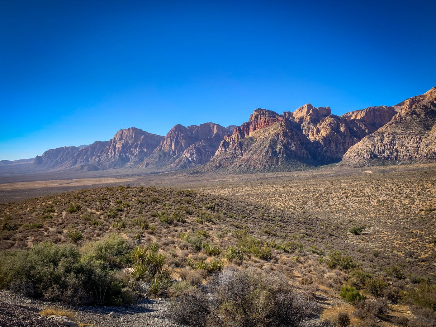 scenic views of red rock canyon