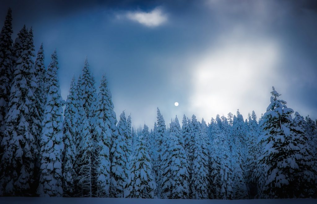best lake tahoe ski resorts for beginners