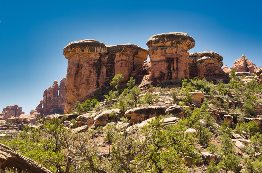 druid arch canyonlands elephant canyon