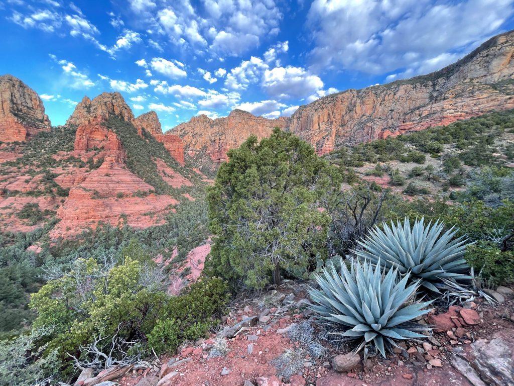beautiful arizona hikes