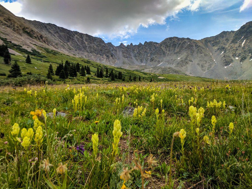 breckenridge colorado in summer