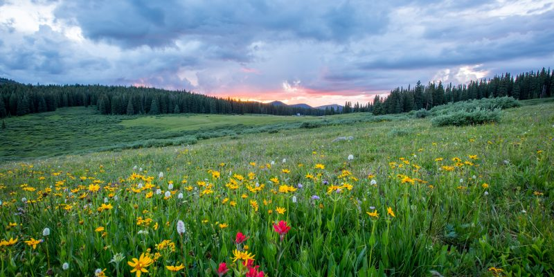 things to do in vail in summer