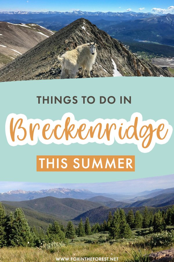 Wondering what to do in Breckenridge, Colorado? Breckenridge is one of the best summer destinations in Colorado, and here are the best things to do in Breckenridge this summer that will make you want to stay!