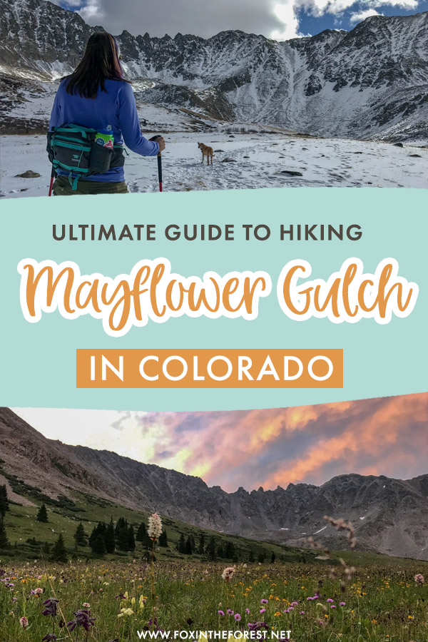 Looking for an easy hike in Colorado? The Mayflower Gulch is one of the most beautiful hikes near Denver for beginners, so if you're keen to give hiking a go while in Colorado, this easy Colorado hike is just for you!