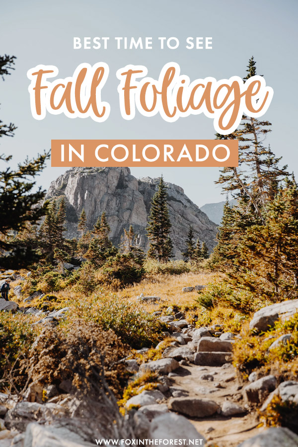 Answering the ultimate question: When do leaves change color in Colorado? If you're visiting Colorado in fall, here is when to visit exactly for the best chances of fall foliage in Colorado!