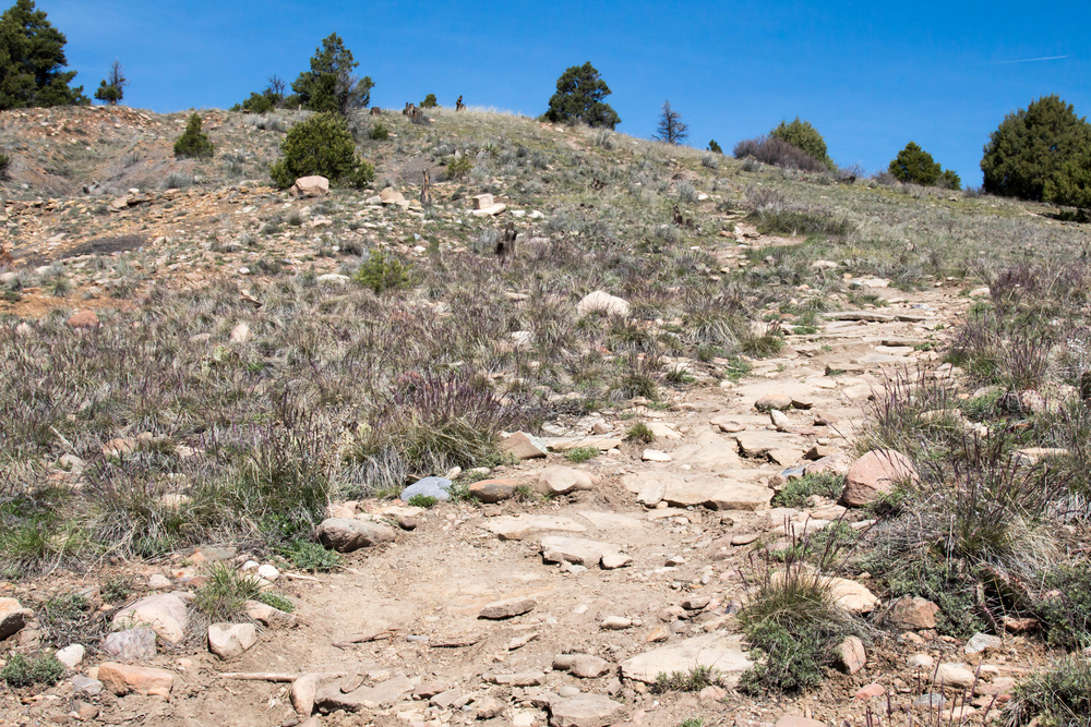 Best hikes in Durango, Colorado