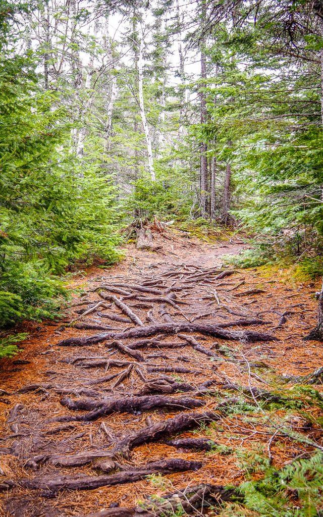 Best hikes in Minnesota